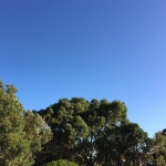 104 Blue sky today ???? #cy365 #perth #365 #potd